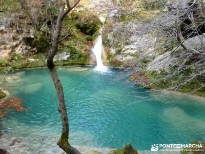 Parques Naturales Urbasa-Andía y Aralar - Nacedero del Urederra; senderismo y excursiones